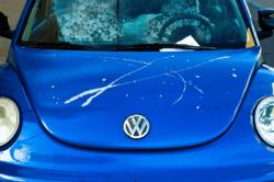 keyed car hood